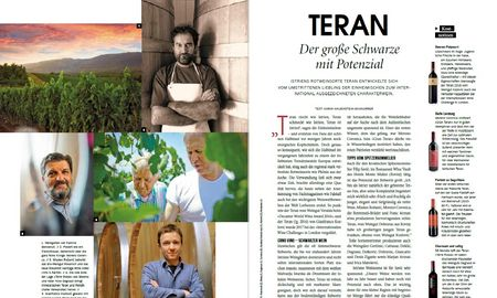 Teran - der große Schwarze